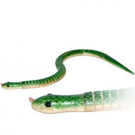 Green Snake Basket - Surprise - Recommended Product