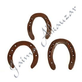 Big Lucky horseshoe and Health - Ideal Gift - NEW