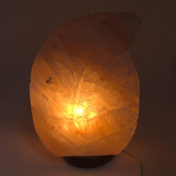 Himalayan Salt Lamp - Leaf Model
